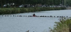 Brugge eert triatleet Kenneth Neyt met memorial