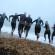 Ironman 70.3 Weymouth geteisterd door onweer